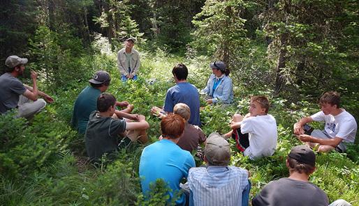 Bron: Flickr cc Forest Service Northern Region