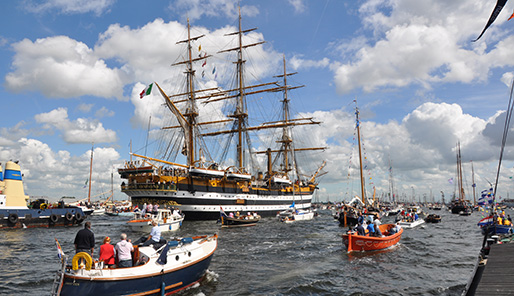 Bron: Wikimedia Commons cc S.J. de Waard