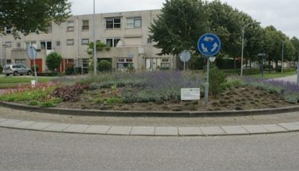 Rotonde Contrabasweg in de Muziekwijk