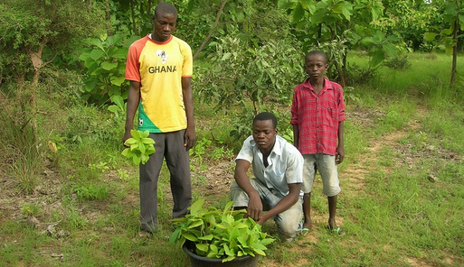 Cc ghana - cc G-lish foundation