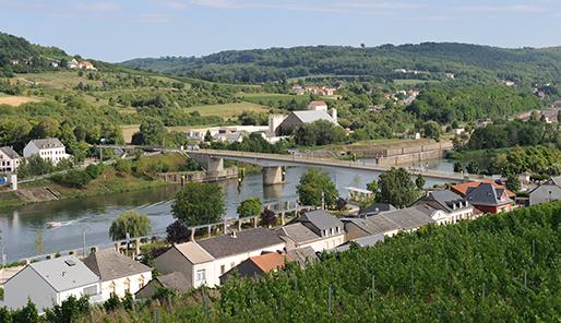 Bron: Wikimedia Commons cc Cayamba