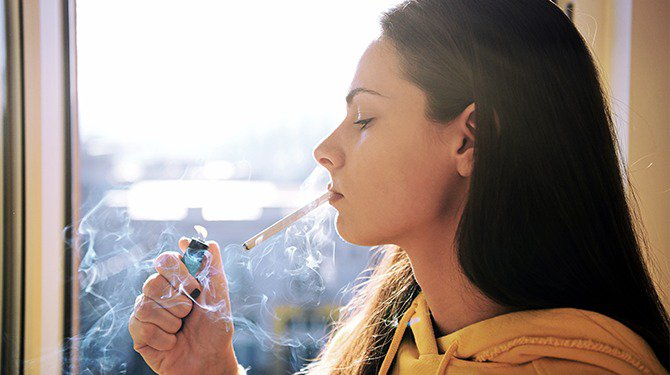 Shutterstock.com / Cveja