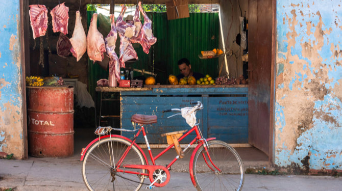 Shutterstock: Kali Justine